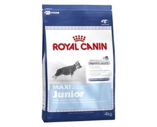royal canin maxi junior 15kg royal canin sklep internetowy aligator. Black Bedroom Furniture Sets. Home Design Ideas